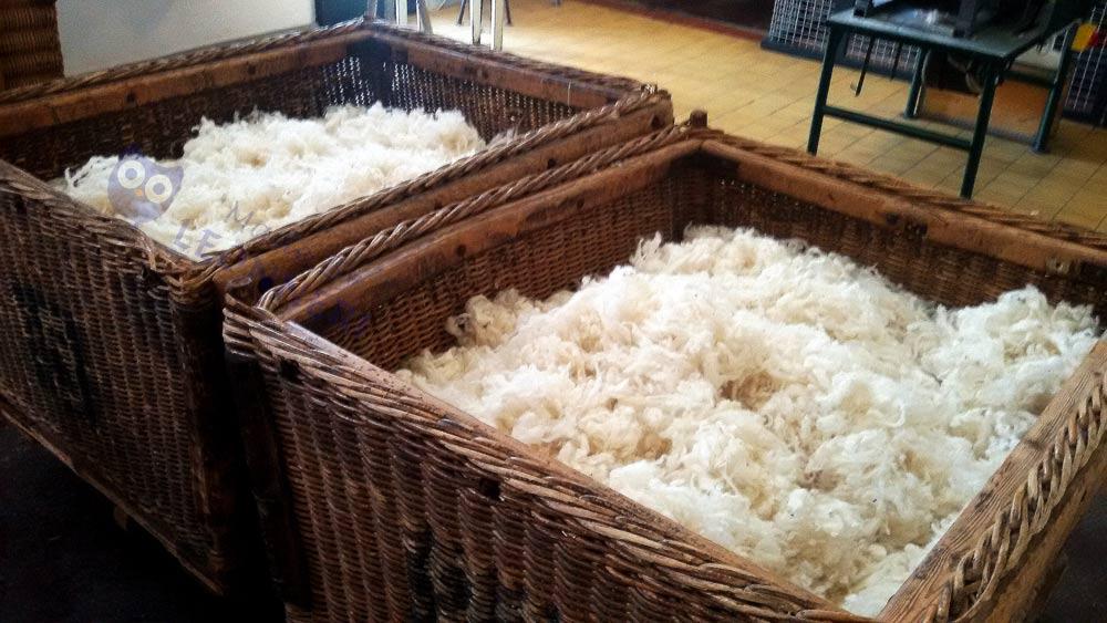 Aus dieser reinen Schafswolle ...