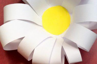 Eine Blume sagt mehr als 1000 Worte